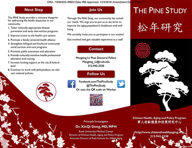 The PINE Study Brochure Front in English